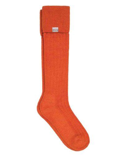 Alpca-Orange-